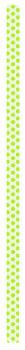 نی سبز 23 سانتیمتری